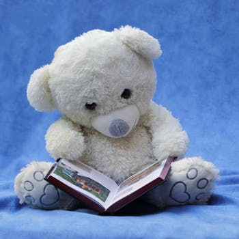 Books for Babies Buying Guide